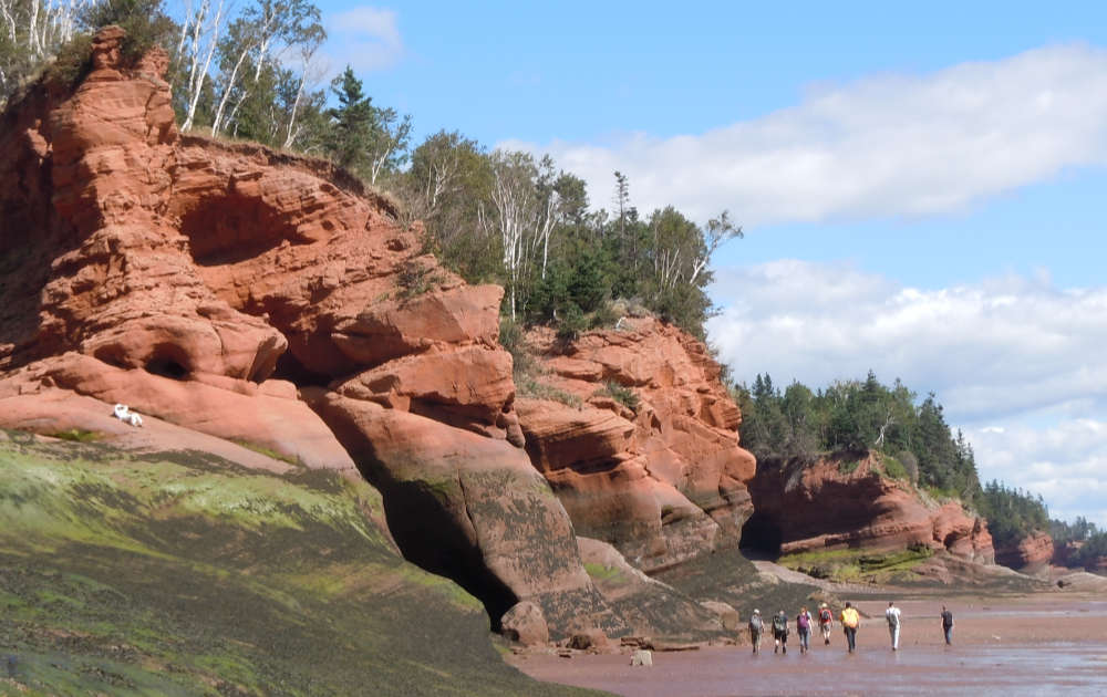 Interbedded Late Triassic (Carnian) fluvial and aeolian sandstones at the top of the Wolfville Formation, Five Islands Provincial park, Minas Basin (view to the east).
